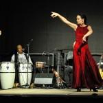 flamenco-herten-4