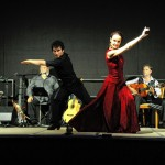 flamenco-herten-5