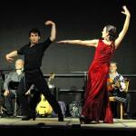 flamenco-herten-6
